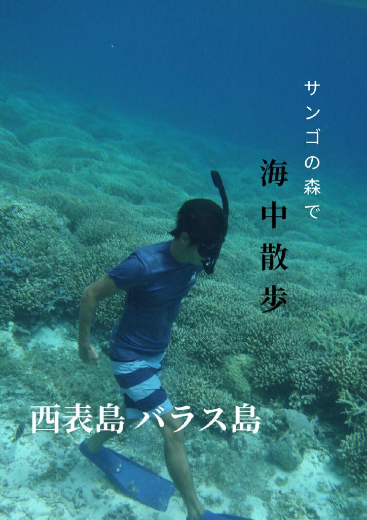 A19_47沖縄_Yohsuke Yoshimuraのサムネイル