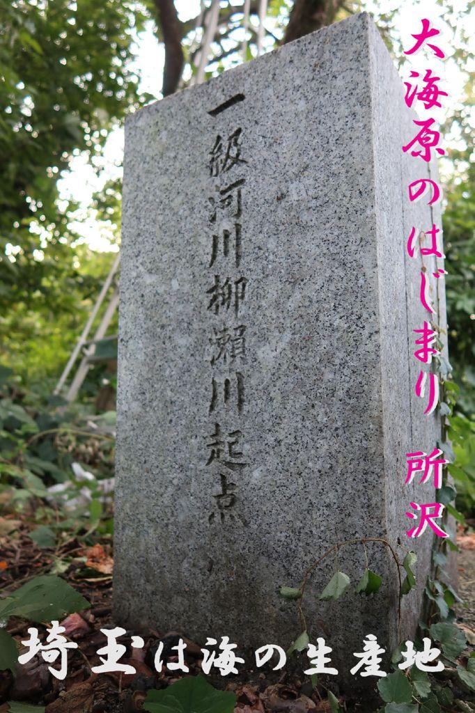 2018I11_11埼玉県サイタマニア★イシバシのサムネイル