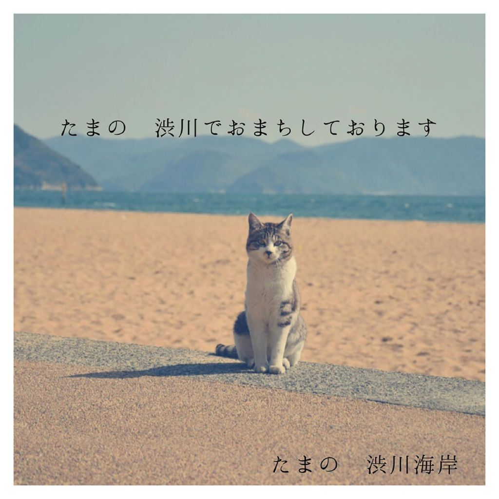 2018I50_33岡山県川井良介のサムネイル