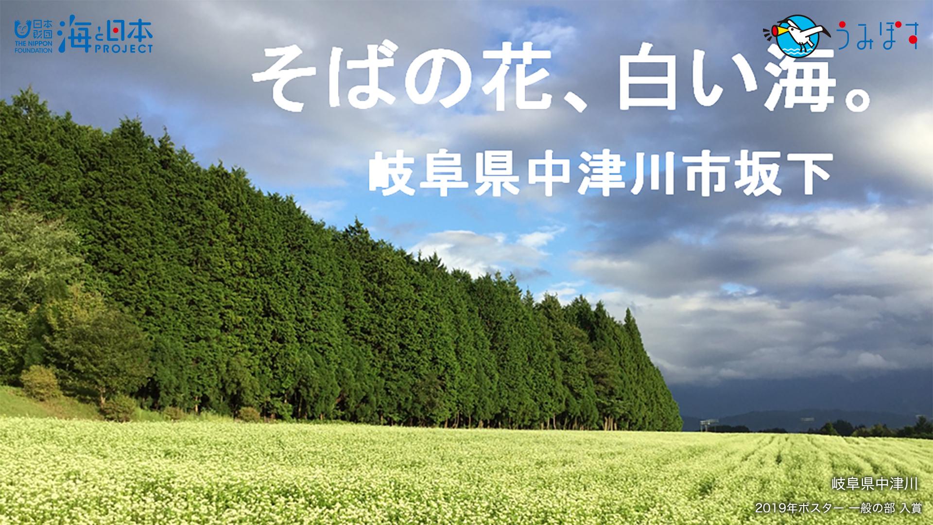 青島 (京都府)
