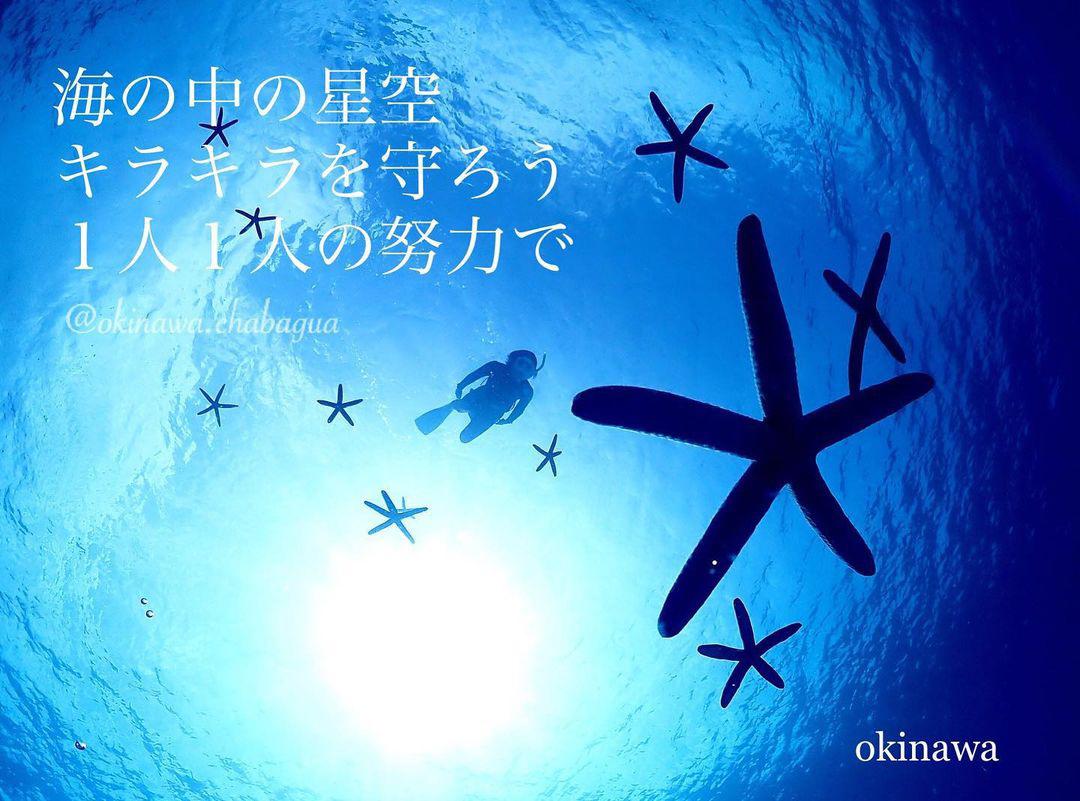 「海の中の星空 キラキラを守ろう 1人1人の努力で」 ai.yu.0624さん