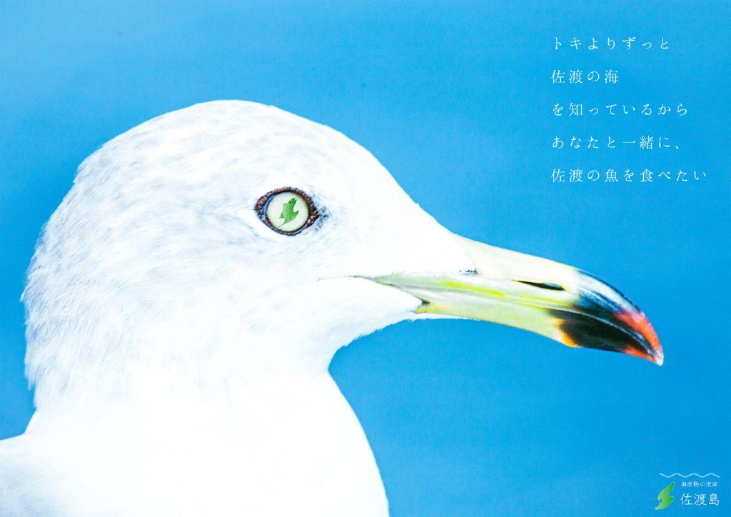 I18_15新潟_遠藤健太のサムネイル