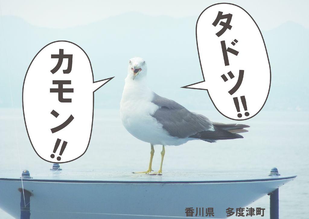 I47_37香川_松方晴輝のサムネイル