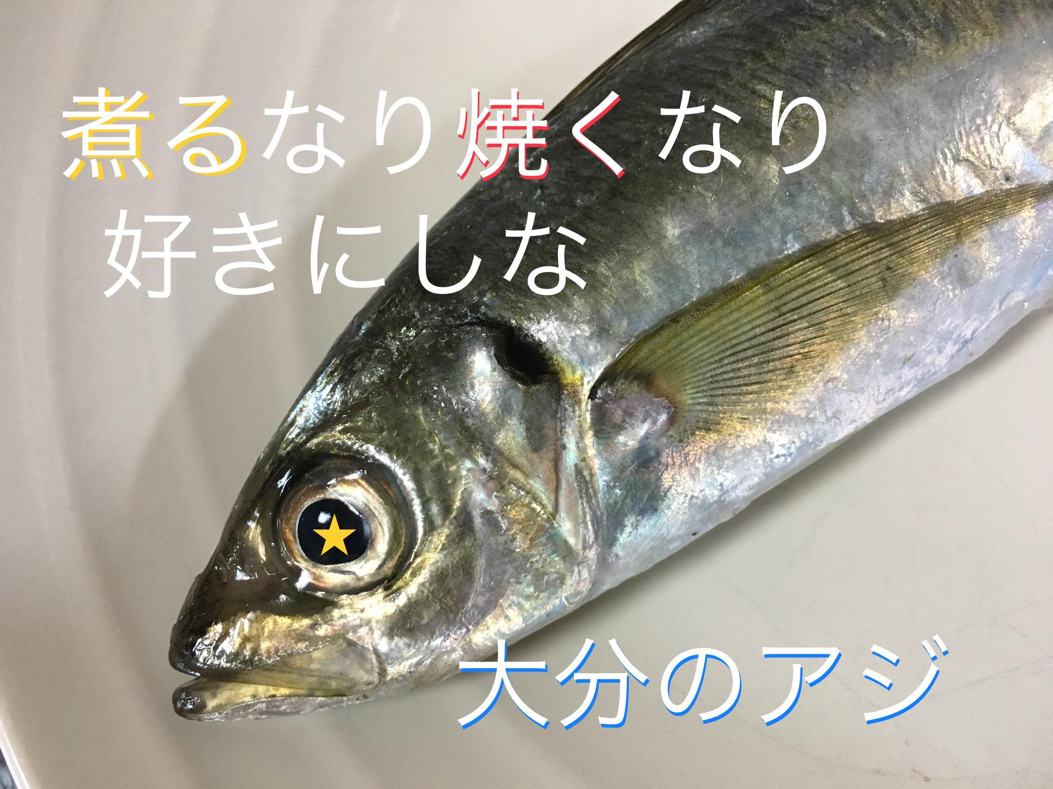 境田明日香(さかいだあすか)2