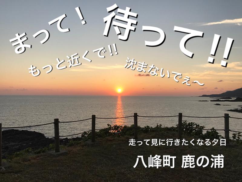 川村里奈(かわむらりな)