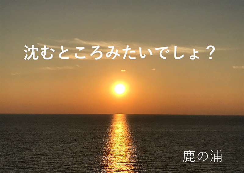 高橋大樹(たかはしだいき)1