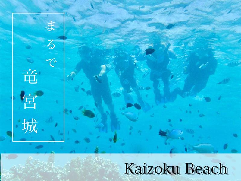 2018_46鹿児島_福田祥子 のコピー