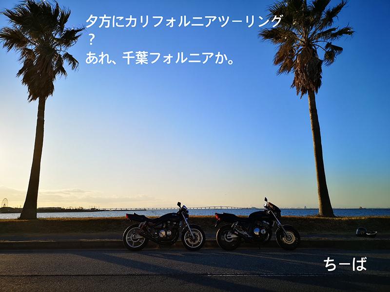 野仲駿平(のなかしゅんぺい)