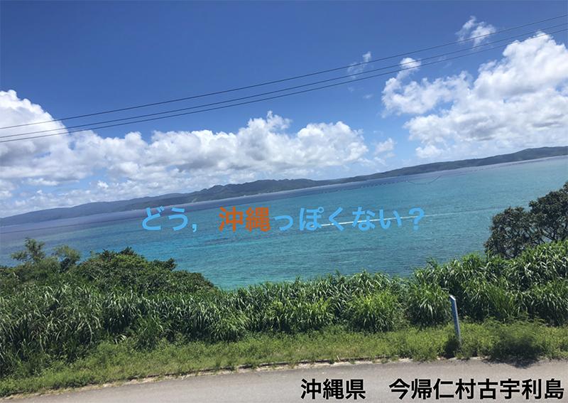 2019年6月26日(水)・28日(金)うみぽすワークショップ in 沖縄県立 ...